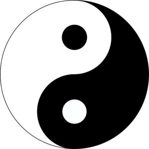 everything-is-tao-ying-yang